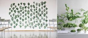 {inspiration} plants.